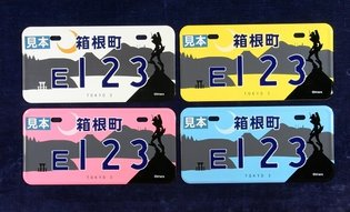 Vibrant Evangelion Visuals - Hakone Issues Number Plates Locally
