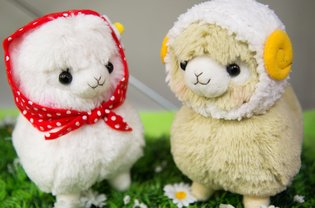 Waiting for Us at the Amuse Exhibition Were Year of the Sheep Alpacasso