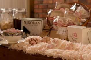 Marshmallow Shop Yawahada Creates Cat-Inspired Marshmallows!