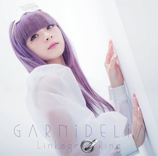 Interview: Music Unit GARNiDELiA [2/2]