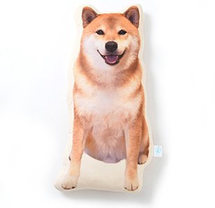 Japanese Shiba Maru Big & Cute Cushion