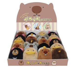 Wombat-san Plushie Set w/ Display Box