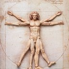 figma The Table Museum: Vitruvian Man (Re-run)