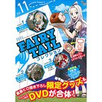Monthly Fairy Tail Collection Vol. 11