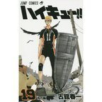 Haikyu!! Vol. 19