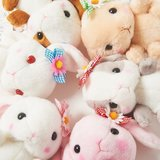 Pote Usa Loppy Flower Rabbit Plush Collection (Standard)