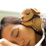 [TOM Exclusive] Nemuriale Sleep Aid Puppy (Miniature Stafford)