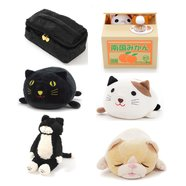 All Kinds of Cats Set