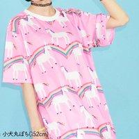 ACDC RAG Rainbow T-Shirt