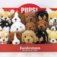 PUPS! Set w/ Display Box