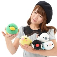 Tsumeru! Mocchiko Kotori Tai Bird Plush Collection (Standard)