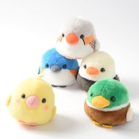 Kotori Tai Waku Waku Bird Plush Collection (Standard)