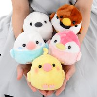 Kotori Tai Tamago kara Kururinpa Bird Plush Collection (Standard)