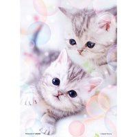Fluffy Kitten Jigsaw Puzzle