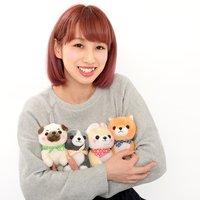 Mameshiba San Kyodai Nihonbare Dog Plush Collection (Standard)