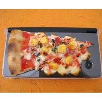 Nintendo DS Series Pizza Food Sample Case