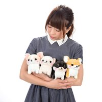 Muchimu Chihuahua Dog Plush Collection (Standard)