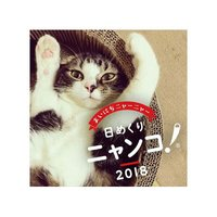 Himekuri Nyanko! Cat Photo 2018 Desktop Daily Calendar
