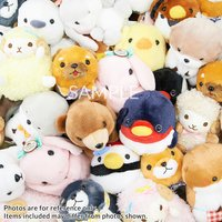 Amuse Plush Lucky Set (Standard)