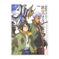 Mobile Suit Gundam: Iron-Blooded Orphans Season 2 Completion