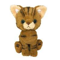 Kitten Plush: Brown Tabby