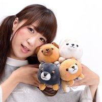 Mameshiba San Kyodai Deshi to Nesoberi Vol. 2 Dog Plush Collection (Standard)