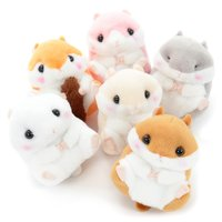 Coroham Coron Hamster Plush Collection (Standard)