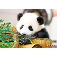 Munching Panda Jigsaw Puzzle