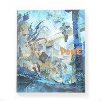 Pone: Posuka Demizu Art Book