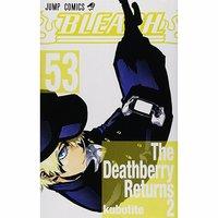 Bleach Vol. 53