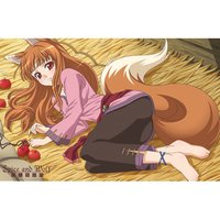 Spice and Wolf Holo Pillow