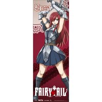 Fairy Tail S8 Erza Full-Length Wall Scroll