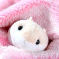 Coroham Coron Mocchiri Hamster Plush Collection (Standard)