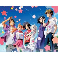 Anohana: The Flower We Saw That Day TV Series Complete Blu-ray Box Set