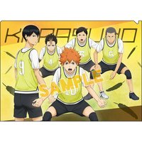 Haikyu!! Karasuno High vs Shiratorizawa Academy Clear File