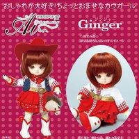 Ai A-702: Ginger