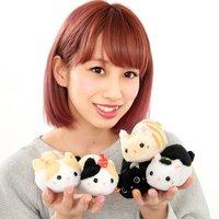 Tsuchineko Suzumi Cat Plush Collection (Ball Chain)