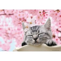 Take it Easy Cat Jigsaw Puzzle