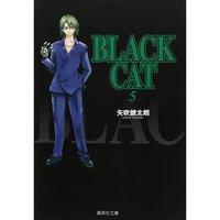 Black Cat Vol. 5