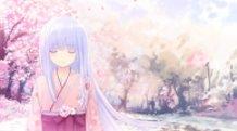 Snow and Sakura