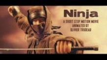 Ninja, A Stop Motion Movie Short