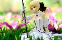 Saber Lily