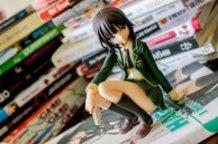 Surrounded by Manga