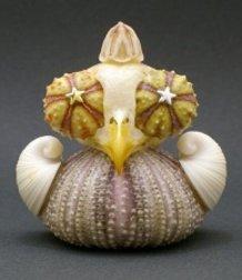 UNI-PIYO (echinus-cheep)