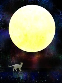 Moon and Cat_Revised Edition