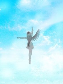 Desire the Sky, Wish for Wings