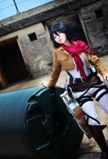 Mikasa: A moment's Repose