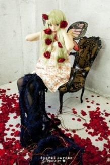 Gertrud Cosplay  (Madoka Magica )