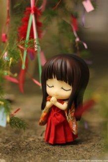 Miho's Wish