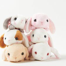 Sleepy Pote Usa Loppy (Standard Size)